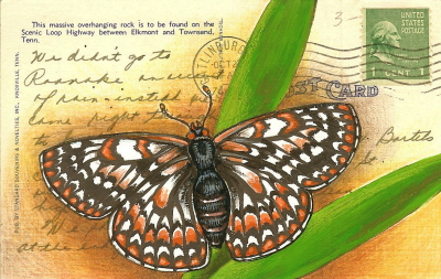 drawacheckerspot4.jpg