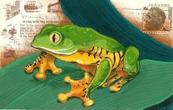 leaf-frog-postcard.jpg