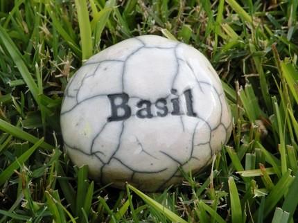 basil 1