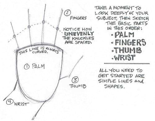 How To Draw Hands Valwebb Com