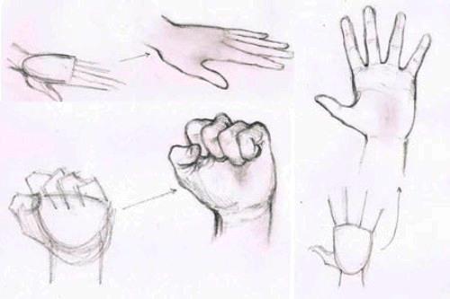 how to draw hands valwebb com