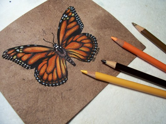 Art for butterfly workshop