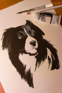 drybrush-border-collie