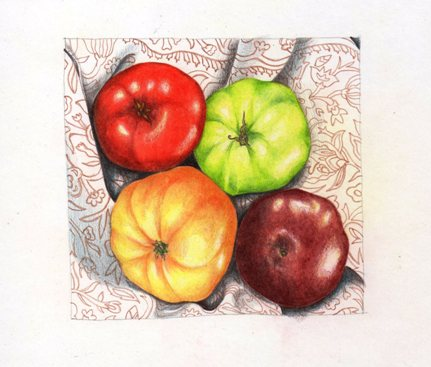L5 tomato drawing - Copy
