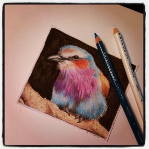 Roller and pencils