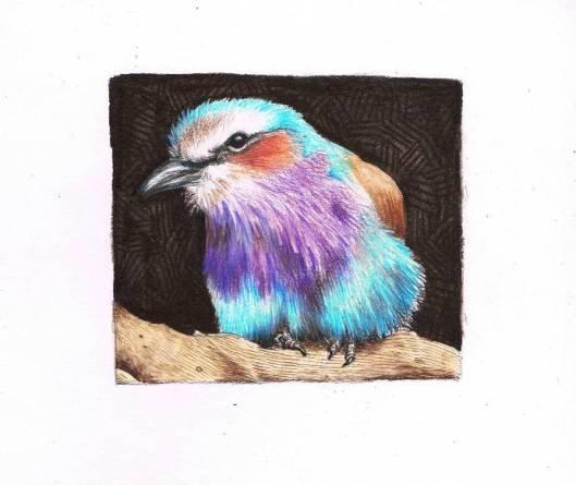 L4 Part 1 Bird 7