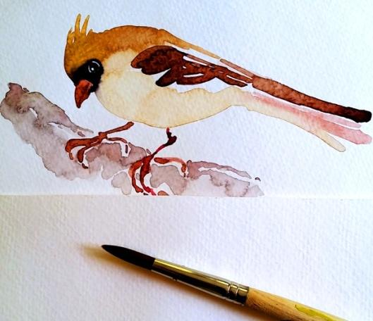 WC Bird