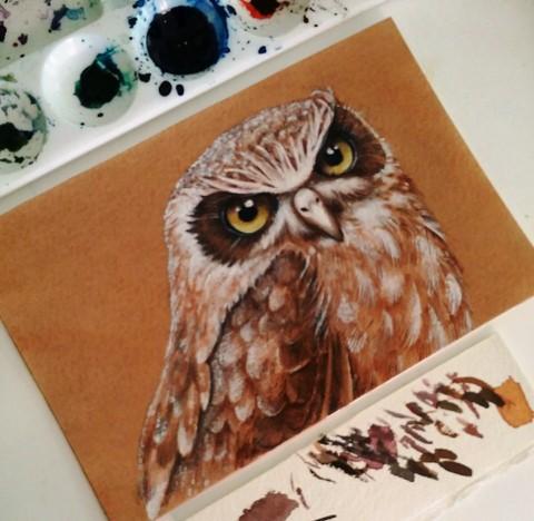 owl finished