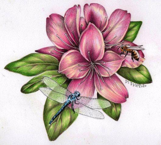 blog dragonfly