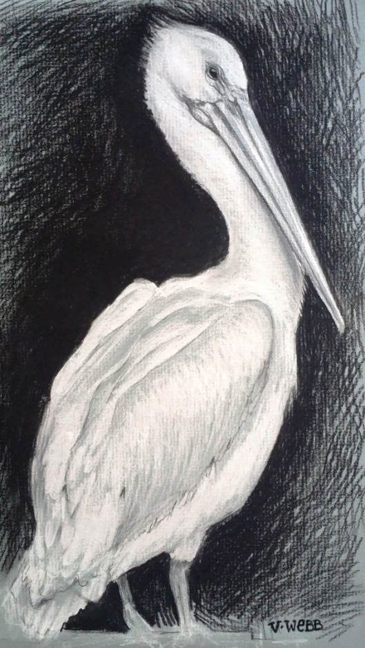 Val Webb - charcoal pelican small