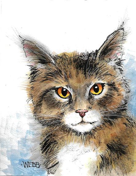 Kitty C