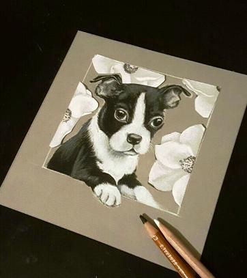 Pup D