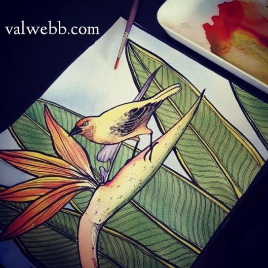 bird of paradise2