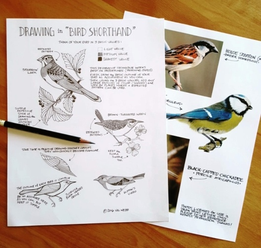 bird shorthand pic