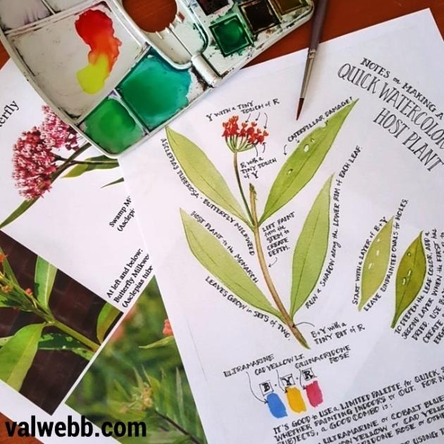 milkweed printables