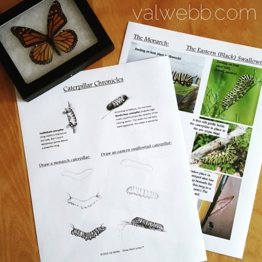 printable caterpillars