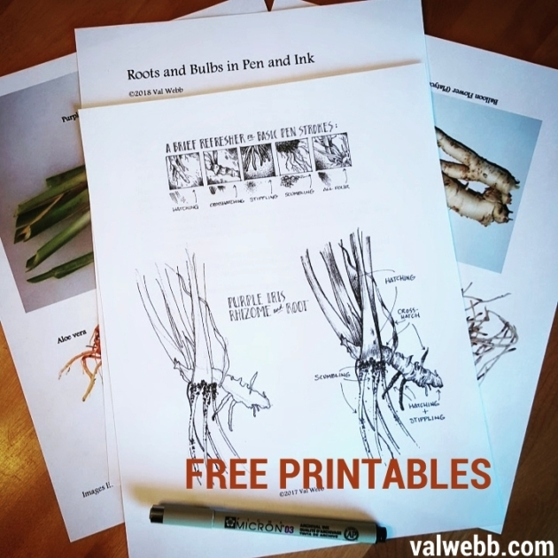 printables roots
